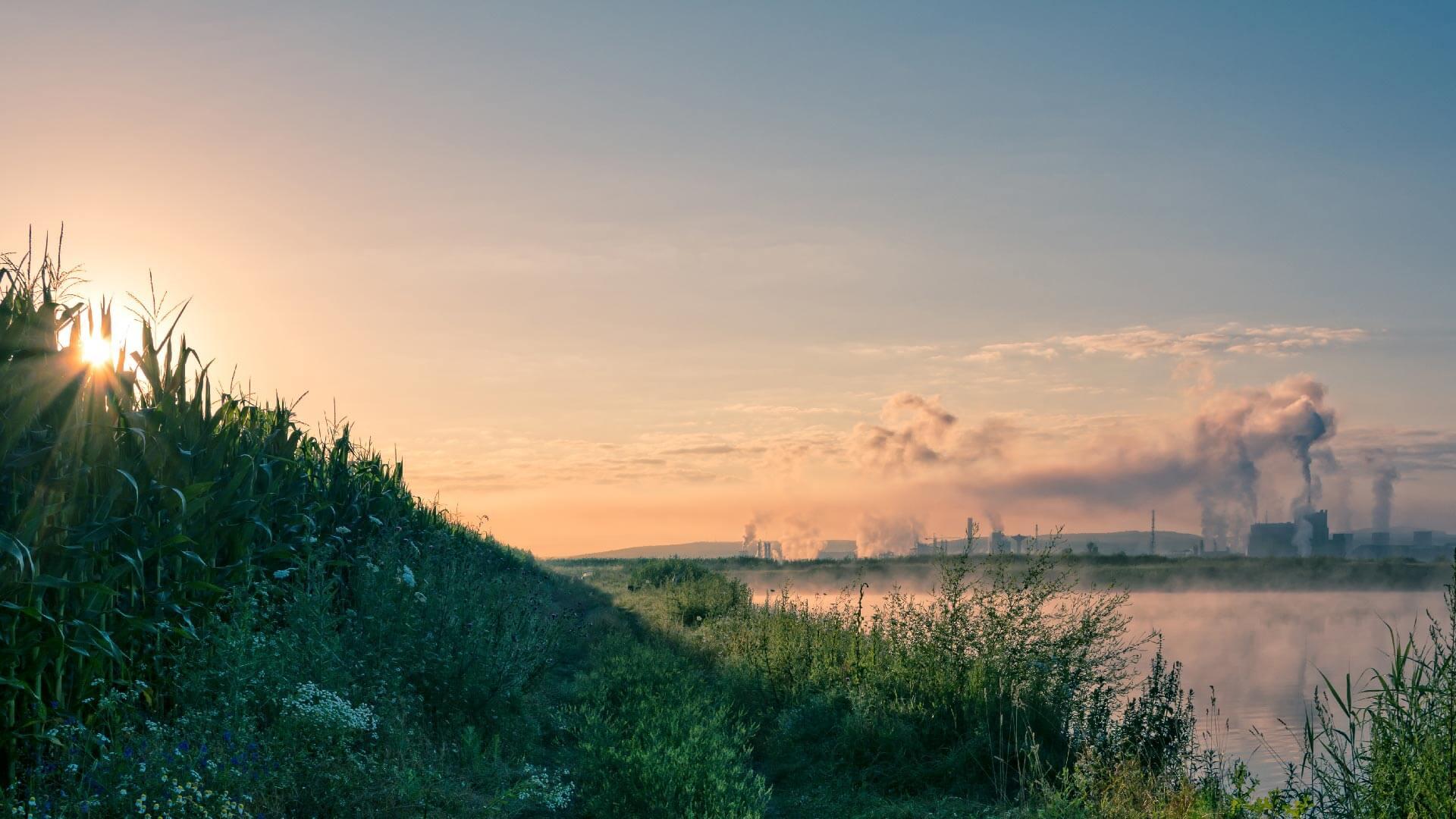 Inquinamento da PFAS in Veneto